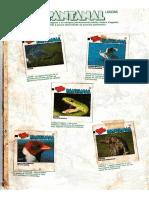 Album Ping Pong - Pantanal.pdf