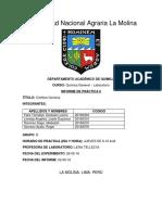 314417988-informe-laboratorio-8.docx