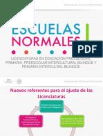 Presentación_Saltillo_131117