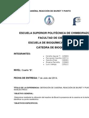 Obtencion de la caseina de la leche pdf