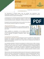 pdf-733-Informe-Quincenal-Hidrocarburos-La-petroquimica.pdf