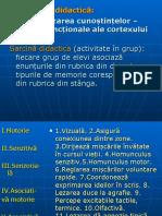 Procese corticale. Coscodan Diana. Ora publica (2).ppt