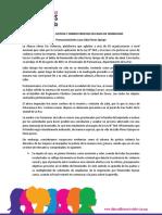 Pronunciamiento-caso-Lilian-Flores.pdf