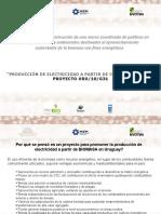 La Experiencia en La Construccin de Una Marco Coordinado de Polticas en Energa Forestal y Ambientales Destinadas Al Aprovechamiento Sustentable de La Biomasa Con Fines Energticos