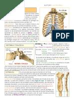 TORAX OSEO.pdf