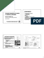 2 .Cromatografía de gases.pdf