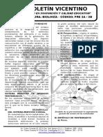 Boletín Biología 30 Pre 2a-2b Sistema Nerviosos en Cordados