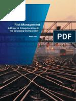 KPMG_Risk_Management_Survey_2011_1.pdf