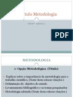 Trabalho de Conclus----o de Curso - Metodologia Bibliografico