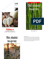 Raz Lk04 Strangeplants Fr Clr