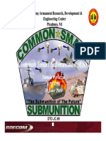 Common Smart Submunition