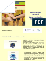 WORKSHOP 1 - P1 - EXCLUZIUNEA SOCIALA - Cauze, Manifestari, Nevoi, Abordari