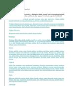 6 Struktur Kloroplas dan Fungsinya.docx