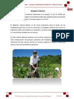 DERECHO LABORAL AGRARIO.docx