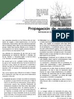 knkkohka.pdf
