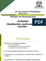Proteínas 2017