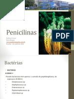 Penicilinas_2014