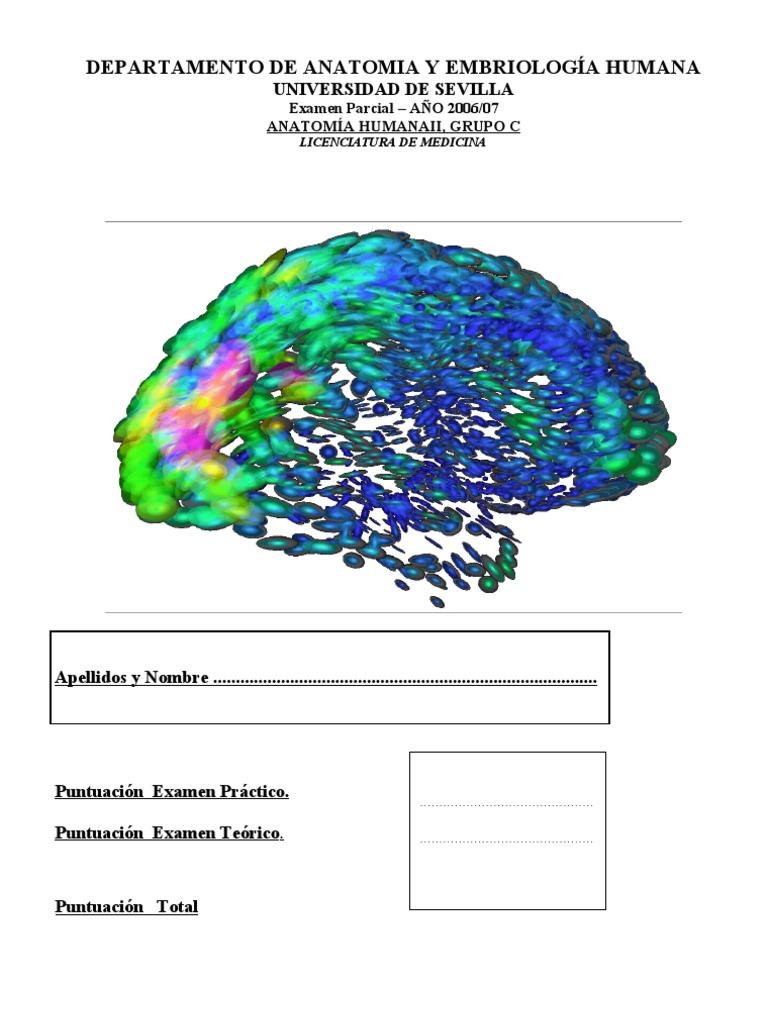 Examen de Neuro 2006711respuestas