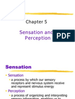 Ch5 Perceptual Set