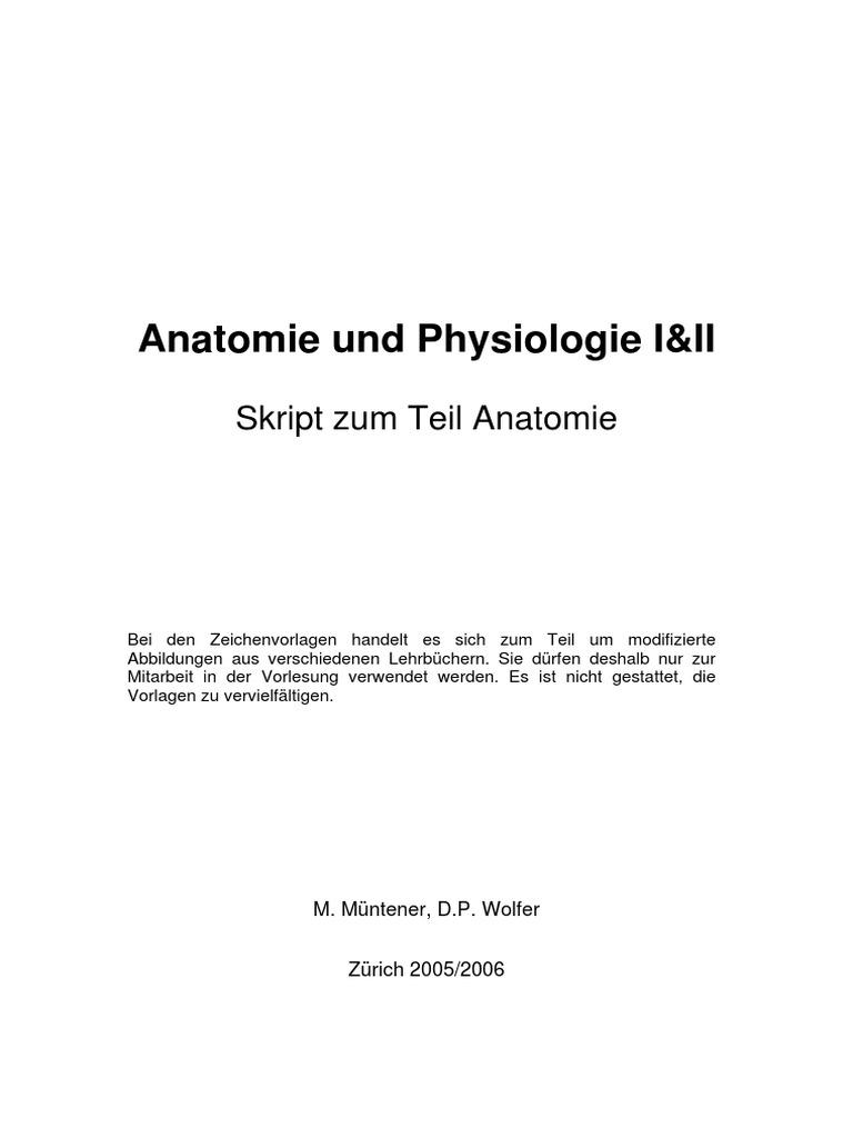 Groß Seestern äußere Anatomie Ideen - Anatomie Ideen - finotti.info