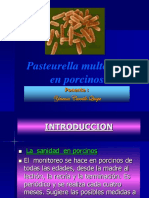 presentacuin pasteyrilosis