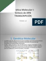 Genetica_Molecular_I.ppt