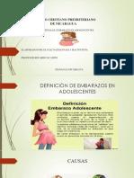 Embarazo en Adolescentes Examen Ultimo de Computaciòn (Eluzai Chacòn)