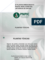 Plantas Toxicas.ppt