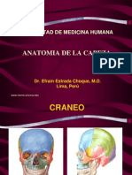 Anatomia-Cabeza[1]