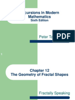 Fractal Shapes Maths