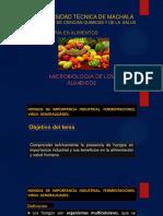 Hongos Microscopicos de Importancia Industrial