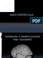 Introd a Neuropsi Curso