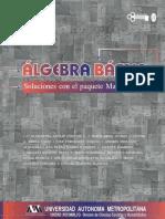 LIBRO-algebra basica.pdf