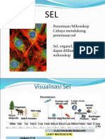 2a. Sel Prokariot & Eukariot (PP)