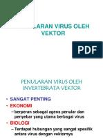 Virus Vektor