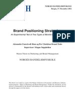 Hem Teslo 2012 Brand Positioning