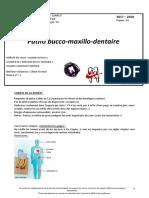 COURS 1 Patho Bucco-maxillo-Dentaire (1)