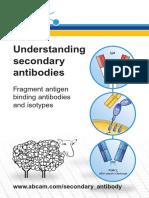 Understanding Secondary Antibodies