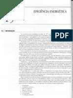 15.Eficiencia energetica.pdf