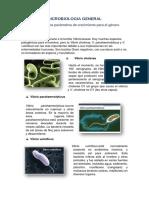 MICROBIOLOGIA GENERA1
