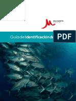 Guia Identificacion PecesBIOLO (1)