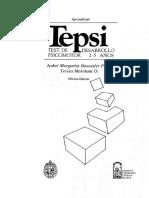 TEPSI Manual.doc