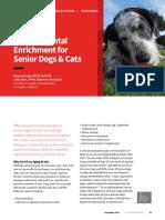 Environmental Enrichment for Senior Dogs & Cats