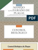 Control Biológico, Físico,  Mecánico Cultural y Legal de Plagas.