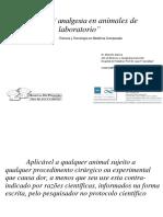 Anestesia Analgesia Eutanasia UNL PDF