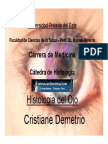 ojo-cris-091017211149-phpapp01