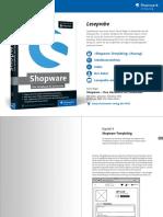 Leseprobe Rheinwerk Shopware Handbuch Fuer Entwickler