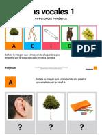 conciencia fonológica1