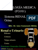 03 Fisio Renal Orina.ppsx