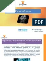 Aula 14 - PPL - Esquizofrenia.pptx